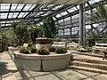 View in greenhouse of Innoshima Flower Center 1.jpg