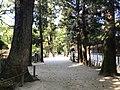 View on west side of Oyamazumi Shrine.jpg