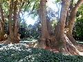 Villa Ocampo San Isidro 37.JPG