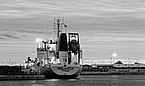 Vinlandia (ship, 1979) BW.jpg