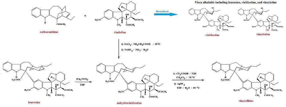 Vinorelbine from leurosine and from catharanthine plus vindoline.jpg