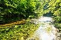 Vintgar Gorge (35002183143).jpg