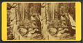 Visitors at the Flume, 1880, by H. S. Fifield 2.png