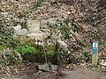 Voltants de Sant Miquel de Solterra - font dels Abeuradors P1090574.JPG