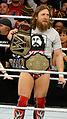 WWE 2014-04-07 19-07-05 NEX-6 0796 DxO (13929316452).jpg