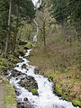Wahkeena Falls in Oregon, March 2012.JPG