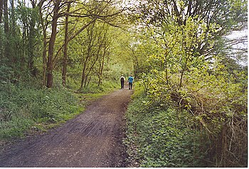 English: Walkers Heading Towards Cranleigh on ...
