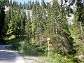 Wanderwege und Mountainbikestrecke im Val Vau - panoramio.jpg