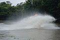 Water Splash During Dredging - Kings Lake Dredging - Banyan Avenue - Indian Botanic Garden - Howrah 2013-10-27 3833.JPG