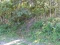 Wavrechain-sous-Denain - Terril n° 166A, Blignières Carreau (06).JPG