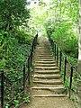 Well worn steps - geograph.org.uk - 428196.jpg