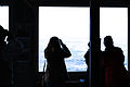 Whale Watchers-1.jpg