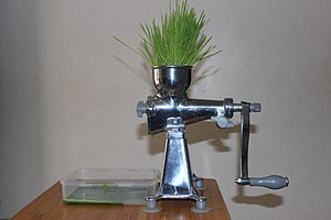 Wheatgrass - Extracting wheatgrass juice with a manual juicing machine.
