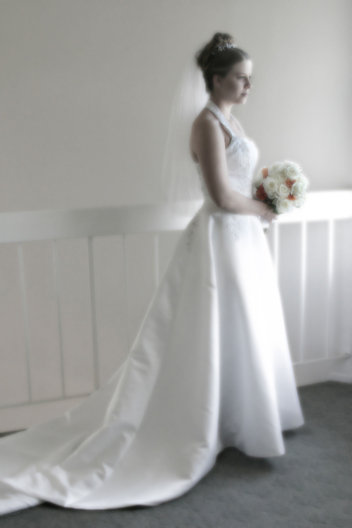 Contemporary Western Wedding Dress