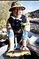 Wild trout project e walker river bridgeport0113 brown trout (26275767535).jpg