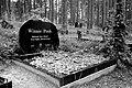 Winnie Pooh is dead -( - panoramio.jpg