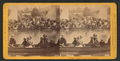 Woodward's Gardens, San Francisco, from Robert N. Dennis collection of stereoscopic views.png