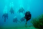 Wounded Warriors Tackle Diving DVIDS178591.jpg