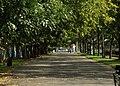 Wrocław, Zygmunta Wróblewskiego, park.jpg