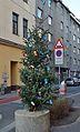 X-mas tree, Reindorfgasse, Vienne.jpg