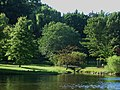 Yantacaw Brook Park.jpg