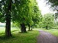 Zámek Veltrusy, zámecký park (1).jpg