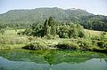 Zelenci Sava Dolinka Spring (12862262874).jpg