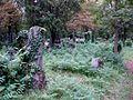 Zentralfriedhof Wien JW 027.jpg