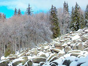 Zlatnite Mostove - Zlatnite Mostove Stone River in the winter, Vitosha Mountain, Bulgaria.