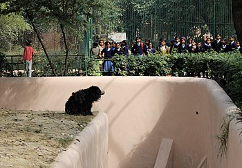 Zoo Lucknow.jpg