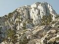 Zubacki kabao view of summit.jpg