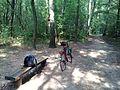 Zurawiniec Poznan, bike.jpg