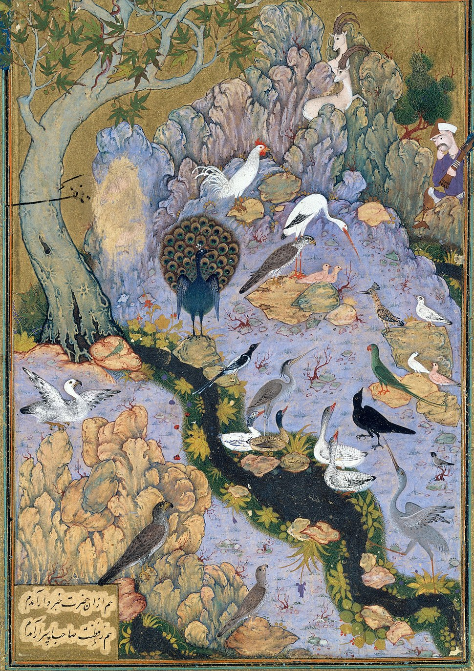 %22The Concourse of the Birds%22, Folio 11r from a Mantiq al-tair (Language of the Birds) MET DT227734