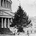 @capitoltree2012 arrives Capitol West Front Nov 26 10am (Pic- 1914 Tree on East Front). (8191723226).jpg