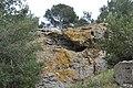 Île de Porquerolles, Hyères, Provence-Alpes-Côte d'Azur, France - panoramio (12).jpg