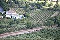 Óbidos IMG 6701 (20936265379).jpg