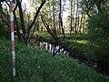 Žesć River.jpg