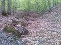 """Дел од Западна Македонија, планина """"Бистра"""" 52.jpg"""