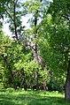 Наводницкий парк в Киеве. Фото 84.jpg