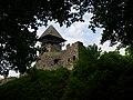 Невицький замок на Закарпатті.JPG