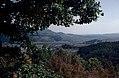 Родопи – Източни - ЗЗ по директивата за местообитанията – ZZ1032 – Източни Родопи от Перперикон, с. Горна крепост - No6.jpg