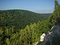 Скелі - panoramio.jpg