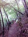 Смоларски водопад 60.jpg