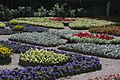 Собственный садик - panoramio (15).jpg