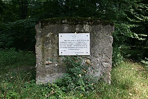 """Forest of Bojcin - Part of the forest in which partisan staffs and units in """"partisan bases"""" were located from the summer of 1942 until the end of the war - dug outs and watchtowers of the border troop of the First Srem Partisan Unit. Memorial plaque 4 July 1963"""