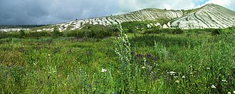 Novooskolsky District - Chalk slopes in Belogorye Nature Reserve, Novooskolsky District