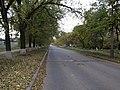 Улица Тухачевского - panoramio.jpg