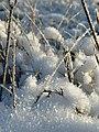 Фото путешествия по Беларуси 523.jpg