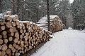 Царникава (Латвия) Вырубают леса - panoramio.jpg