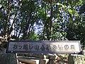 おっ越し山ふれあいの森 - panoramio.jpg